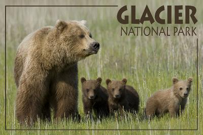 Glacier National Park - Grizzly Bear and Cubs-Lantern Press-Wall Mural
