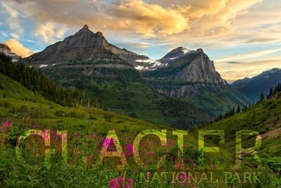 https://imgc.artprintimages.com/img/print/glacier-national-park-montana-sunset-and-flowers-horizonal-version_u-l-q1grdti0.jpg?p=0