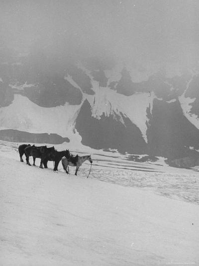Glaciers and Icefields Seen along Columbia Icefield Highway between Banff and Jasper-Andreas Feininger-Photographic Print