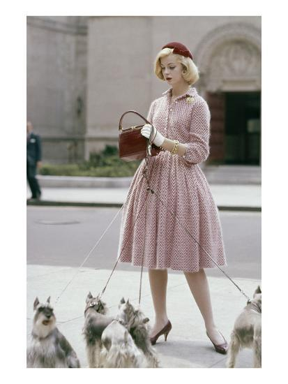 Glamour - October 1959 - Woman Walking a Pack of Dogs-Sante Forlano-Premium Photographic Print