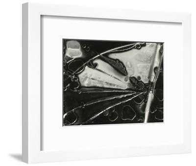 Glass, 1954-Brett Weston-Framed Photographic Print