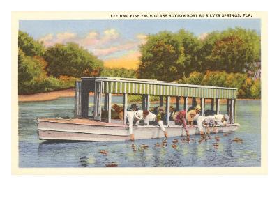 Glass Bottom Boat, Silver Springs, Florida--Art Print
