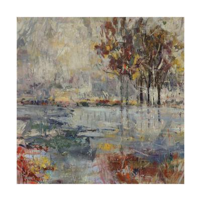 https://imgc.artprintimages.com/img/print/glass-lake_u-l-q1bk2c70.jpg?artPerspective=n