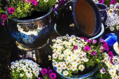 Glazed Flower Pots I-Alan Hausenflock-Photographic Print