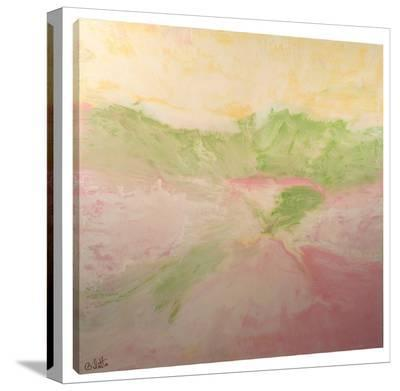 Gleaming Plains-Barbara Biolotta-Stretched Canvas Print