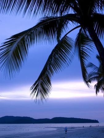 Sunset on Palm Trees Lining Beachfront at Pantai Cenang, Malaysia