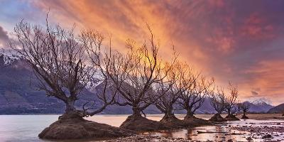 Glenorchy on Fire-Yan Zhang-Photographic Print
