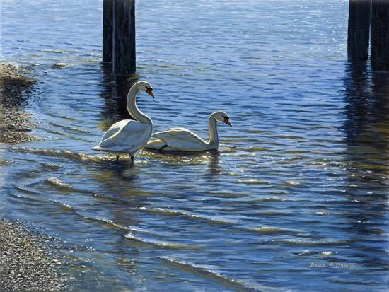 Glistening Water Swans-Bruce Dumas-Giclee Print