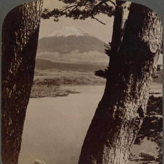 'Glorious Fuji, beloved by artists and poets, seen through pines at Lake Motosu, Japan', 1904-Unknown-Photographic Print