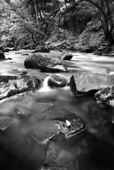 Gloss-Craig Howarth-Photographic Print