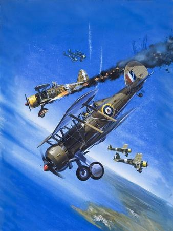 Gloster Gladiator-Wilf Hardy-Giclee Print