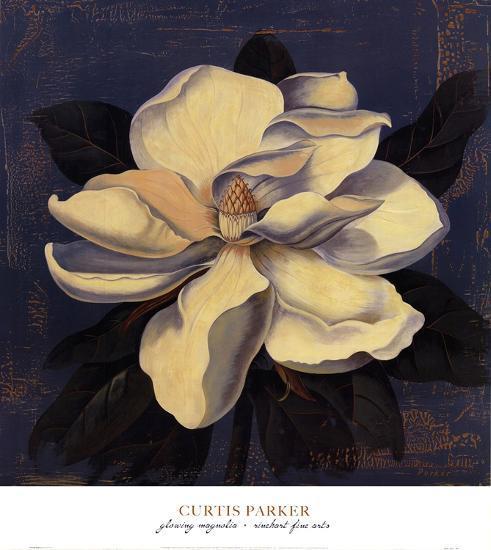 Glowing Magnolia-Curtis Parker-Art Print