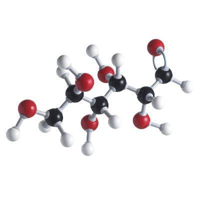 Glucose Sugar Molecule-Science Photo Library-Photographic Print