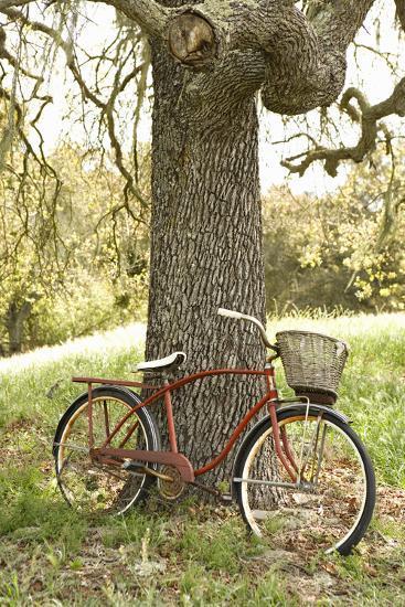 Go by Bike II-Karyn Millet-Photographic Print