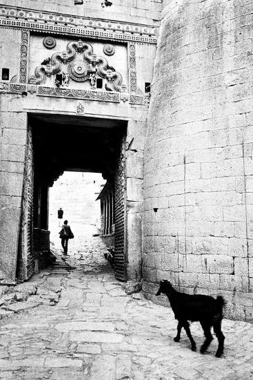 Goat and Man, Fort Entrance Gate, Jaisalmer, Rajasthan, India, 1984--Photographic Print