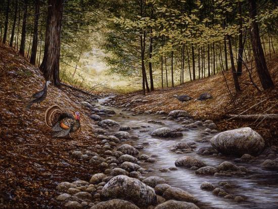 Gobbler Run-John Morrow-Giclee Print