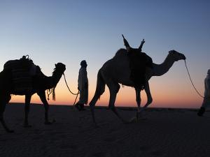 Camel Drivers at Dusk in the Sahara Desert, Near Douz, Kebili, Tunisia, North Africa, Africa by Godong