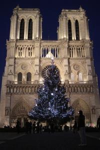 Christmas Tree, Notre-Dame De Paris Cathedral, Paris, France, Europe by Godong