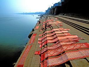 Dhobi Ghat, Varanasi, Uttar Pradesh, India, Asia by Godong