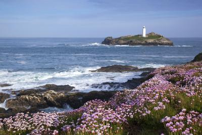 Godrevy Island and Lighthouse from Gwithian Thrift--Photographic Print
