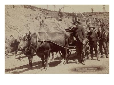 https://imgc.artprintimages.com/img/print/gold-fever-prospectors-going-to-the-new-gold-field_u-l-pgkhsb0.jpg?p=0