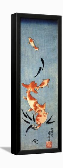 Gold Fish-Kuniyoshi Utagawa-Framed Stretched Canvas Print