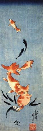 https://imgc.artprintimages.com/img/print/gold-fish_u-l-pgf2be0.jpg?p=0
