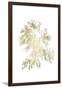 Gold Foil Ash Tree II