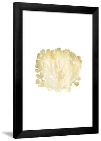 Gold Foil Coral III-Vision Studio-Framed Art Print