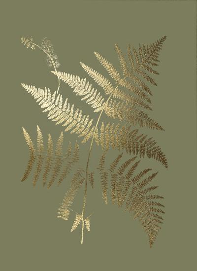 Gold Foil Ferns I on Mid Green-Vision Studio-Art Print