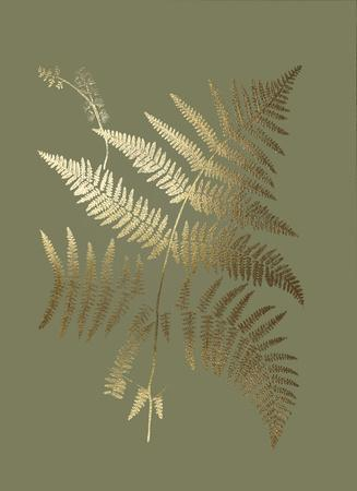 https://imgc.artprintimages.com/img/print/gold-foil-ferns-i-on-mid-green_u-l-f8qyfb0.jpg?p=0