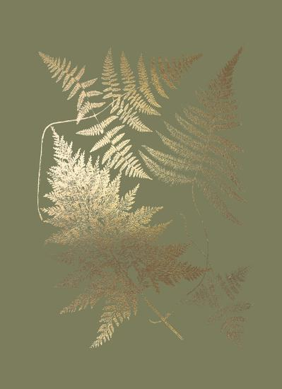 Gold Foil Ferns III on Mid Green-Vision Studio-Art Print
