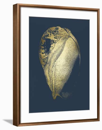 Gold Foil Shell IV on Cobalt-Vision Studio-Framed Art Print