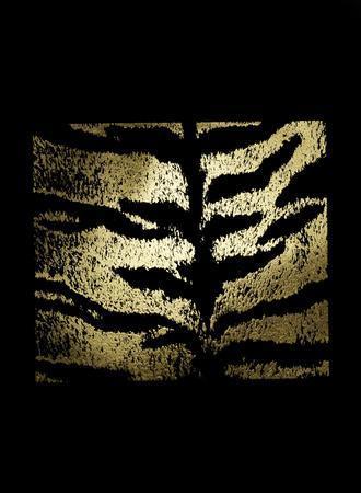 https://imgc.artprintimages.com/img/print/gold-foil-tiger-pattern-on-black_u-l-f9fze40.jpg?p=0