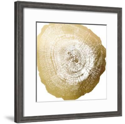 Gold Foil Tree Ring IV-Vision Studio-Framed Art Print