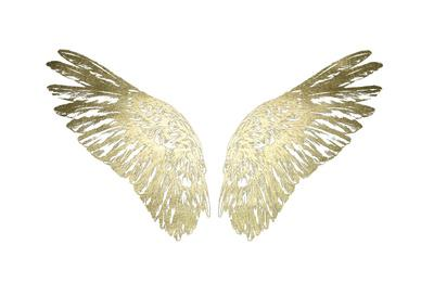 https://imgc.artprintimages.com/img/print/gold-foil-wings-ii_u-l-f976v60.jpg?p=0