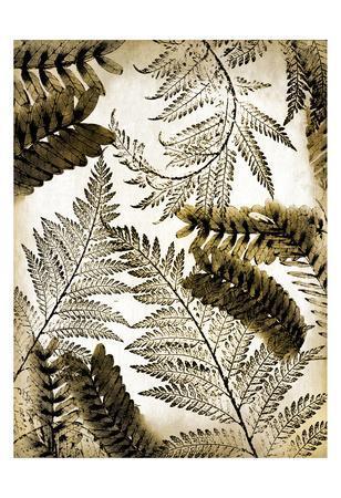 https://imgc.artprintimages.com/img/print/gold-palm-1_u-l-f93sk70.jpg?p=0