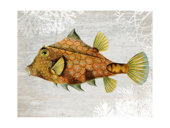 Gold Turret Fish-Fab Funky-Art Print
