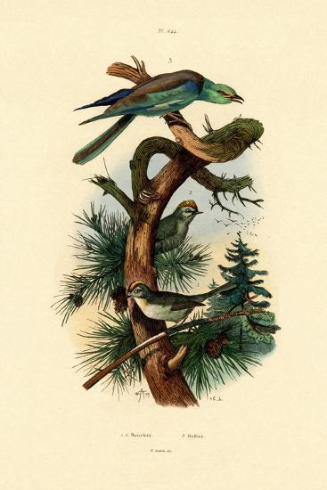Goldcrests, 1833-39--Giclee Print
