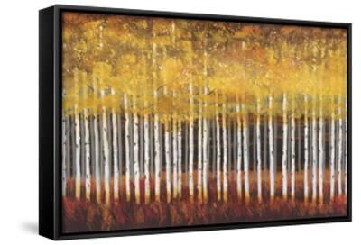 Golden Aspens-Robert Holman-Framed Canvas Print