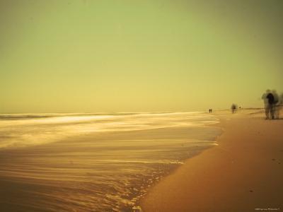 Golden Beach Landscape-Jan Lakey-Photographic Print