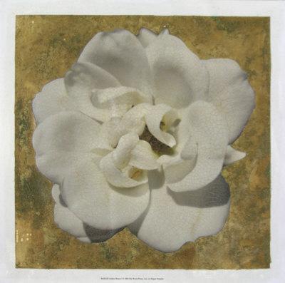 Golden Bloom I-Megan Meagher-Giclee Print