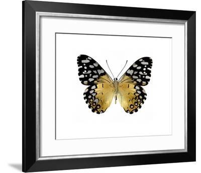 Golden Butterfly IV-Julia Bosco-Framed Giclee Print