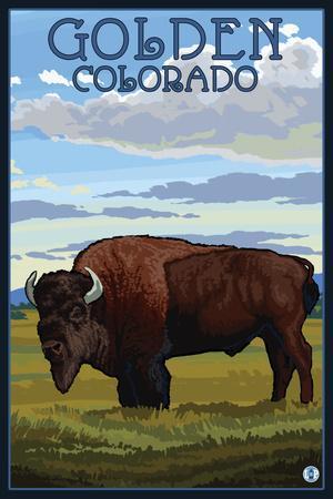 https://imgc.artprintimages.com/img/print/golden-colorado-bison-scene_u-l-q1gppzp0.jpg?p=0
