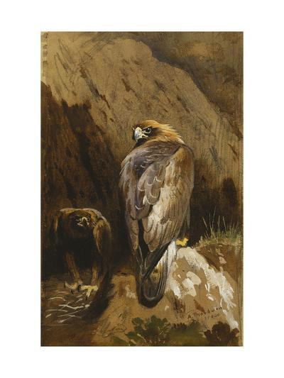 Golden Eagles at their Eyrie-Archibald		 Thorburn-Giclee Print