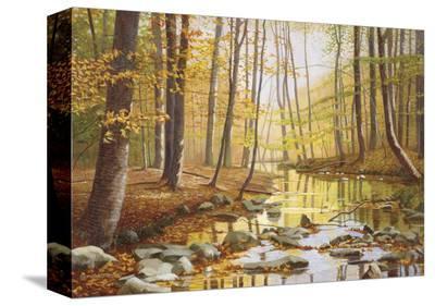 Golden Flow-Gene Mcinerney-Stretched Canvas Print