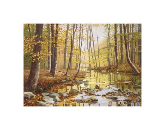 Golden Flow-Gene Mcinerney-Art Print
