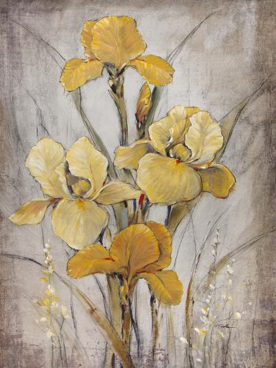 Golden Irises I-Tim O'toole-Art Print