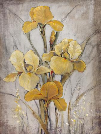 https://imgc.artprintimages.com/img/print/golden-irises-i_u-l-q11aqyv0.jpg?p=0