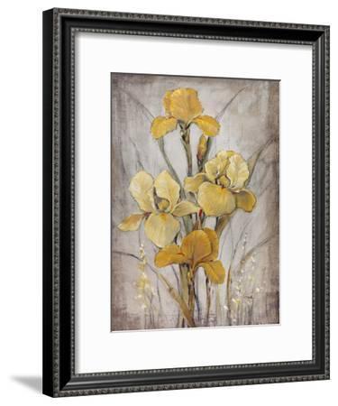 Golden Irises I-Tim O'toole-Framed Art Print